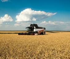ростсельмаш, сельхозтехника, техника, комбайны, поле, пшеница