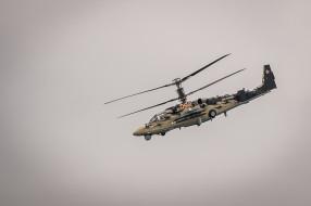 Ка-52 обои для рабочего стола 2298x1527 ка-52, авиация, вертолёты, ударные, вертолеты, россия, ввс, аллигатор