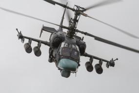 ударные вертолеты, вертолеты, аллигатор, ка-52, авиация, россия, ввс