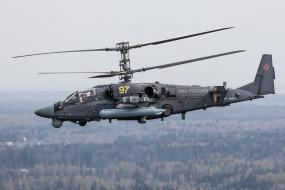 вертолеты, авиация, россия, аллигатор, ударные вертолеты ввс, ка-52