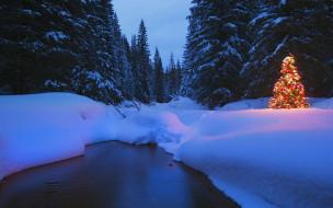 огни, лес, ёлка, река, снег