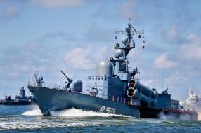 корабли, катера, вмф, ракетный катер, балтийский флот, заречный, проект 1241, гвардейский
