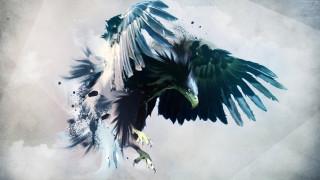 хищник, птица, орел