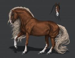 конь, фон, грива