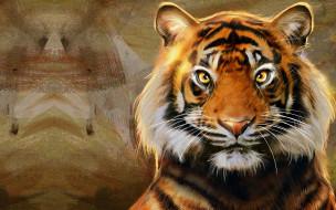 Nic Hon, тигр