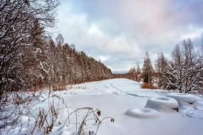 природа, зима, деревья, лес