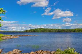 карелия, природа, реки, озера, берег, лес, озеро, россия