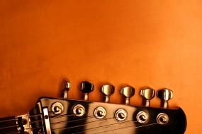 гриф, струны, гитара