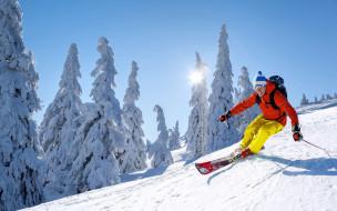 спорт, лыжный спорт, небо, солнце, снег, зима, лыжи, шапка, спуск, деревья