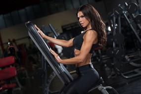 спорт, body building, тренажеры, темные, волосы, женщины, спортзалы, фитнес, модель