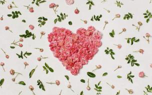 сердце, лепестки
