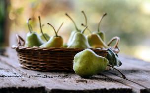 груши, фрукты