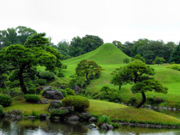 садик, японский