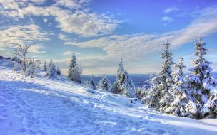 снег, тропа, зима, облака, небо, следы, ёлки, пейзаж, деревья, ели, склон