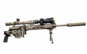 винтовка снайперская, оптика, глушитель