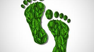 капли, нога, фон, листья