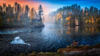 туман, утро, озеро