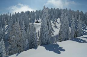 зима, снега, деревья, ели, домик, холмы, пейзаж