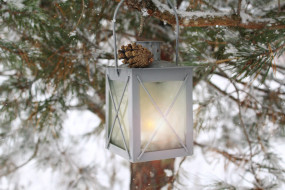 шишка, сосна, снег, фонарь, природа