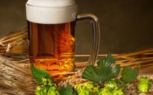 бокал, пена, пиво