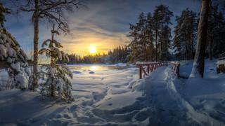 зима, парк, утро