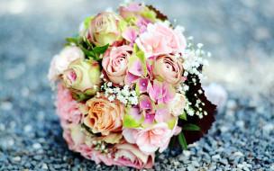 гортензия, розы
