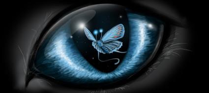 фэнтези, другое, бабочка, фон, глаз