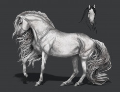 фон, грива, конь