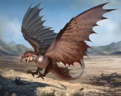 крылья, фон, человек, дракон