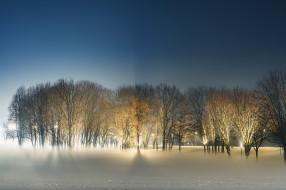 зима, ночь, парк