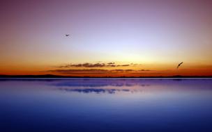небо, закат, птицы, озеро