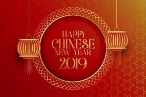 2019г, Новый год, китайский