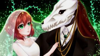 аниме, mahou tsukai no yome, невеста, чародея