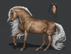 фон, конь, грива
