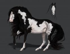 грива, конь, фон