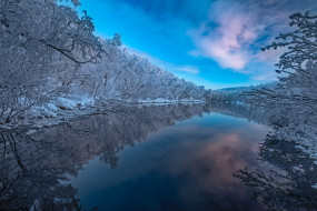 отражение, река, деревья, Lapland, лес, зима, Finland, Финляндия