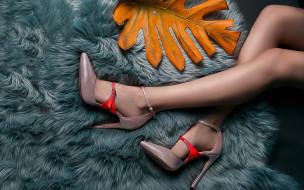 ножки, лист, туфли
