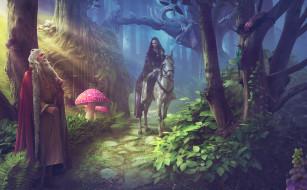 мужчина, конь, девушка, лес, фон