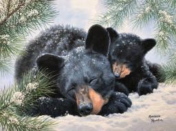 рисованное, животные,  медведи, медведи