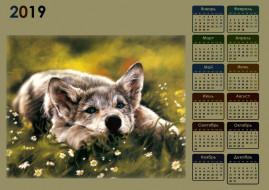 цветы, волк