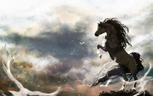 конь, ветер, птицы, тучи
