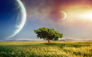 планеты, дерево, поле, небо