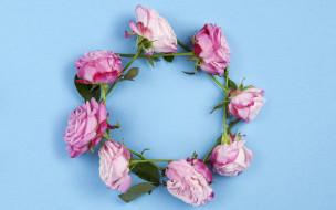 розы, цветы, pink, wood, венок, розовые