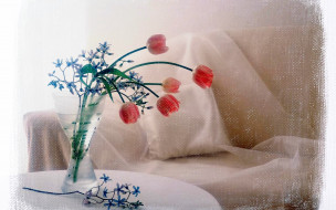 тюльпаны, ваза, холст, кресло, цветы, кот, шапка