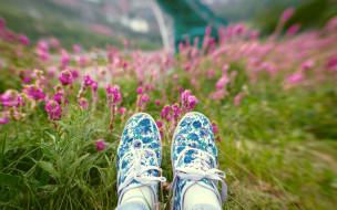 тапки, ноги, цветы, трава