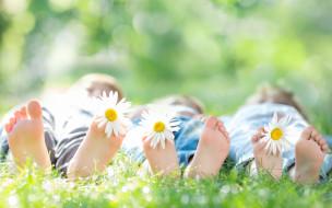 ноги, трава, ромашки