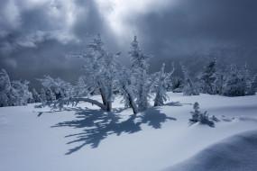 природа, снег, горы, тени, тучи, пейзаж, деревья, зима