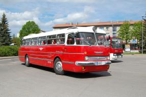 Икарус 55 Люкс, ретро, автобусы, Lux, Ikarus