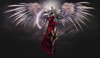 крылья, платье, фон, девушка