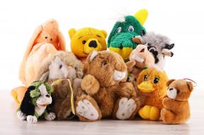 звери, игрушки, белый фон, плюшевые